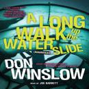 A Long Walk up the Water Slide: The Neal Carey Mysteries, Book 4
