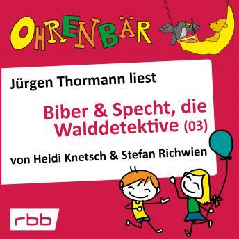 Ohrenbär - eine OHRENBÄR Geschichte, 4, Folge 34: Biber & Specht, die Walddetektive, Teil 3 (Hörbuch