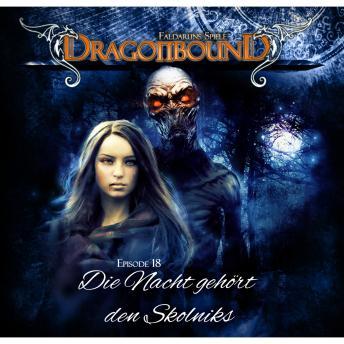 Dragonbound, Episode 18: Die Nacht gehört den Skolniks