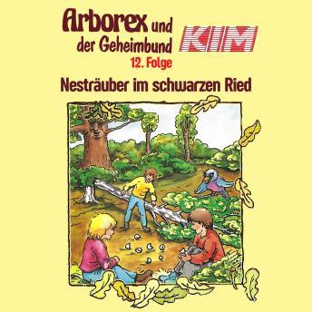 Arborex und der Geheimbund KIM, Folge 12: Nesträuber im schwarzen Ried