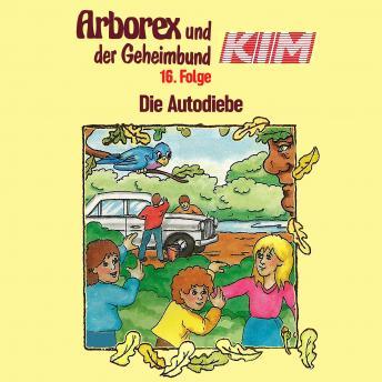Arborex und der Geheimbund KIM, Folge 16: Die Autodiebe