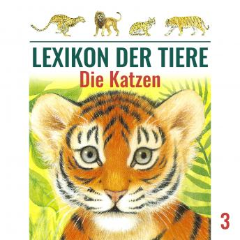 Lexikon der Tiere, Folge 3: Die Katzen