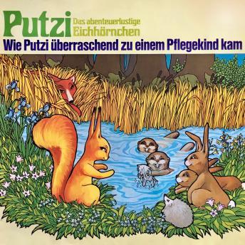 Putzi - Das abenteuerlustige Eichhörnchen, Folge 1: Wie Putzi überraschend zu einem Pflegekind kam
