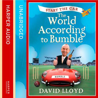 Start the Car: The World According to Bumble, David Lloyd