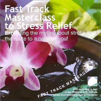 Fast track masterclass to stress relief, Annie Lawler