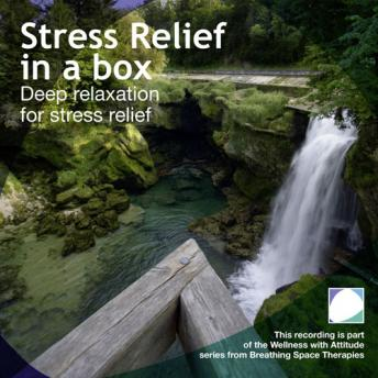 Stress relief in a box, Annie Lawler