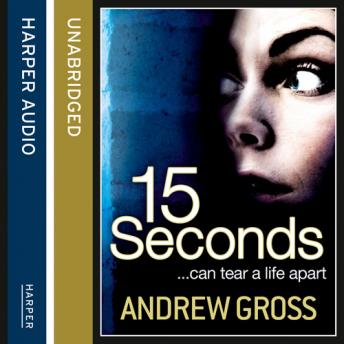 Download 15 Seconds by Andrew Gross