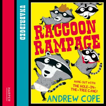 Raccoon Rampage, Andrew Cope