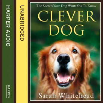 Clever Dog, Sarah Whitehead