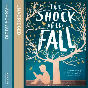 Shock of the Fall, Nathan Filer