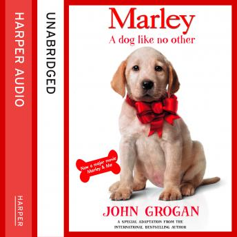Marley: A Dog Like No Other, John Grogan