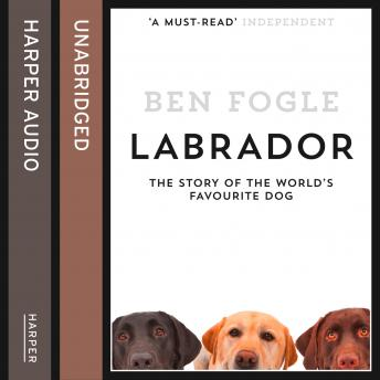 Labrador: The Story of the World's Favourite Dog, Ben Fogle