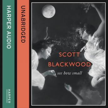 See How Small, Scott Blackwood