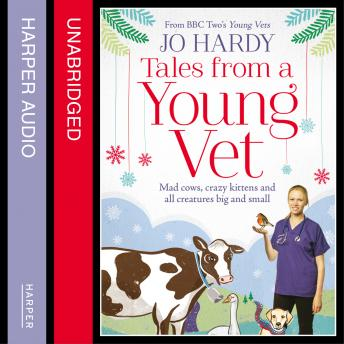 Tales from a Young Vet: Mad cows, crazy kittens, and all creatures big and small, Caro Handley, Jo Hardy