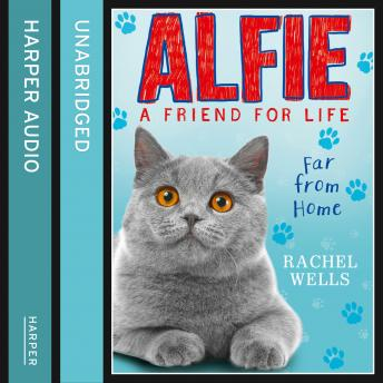 Alfie Far From Home, Rachel Wells