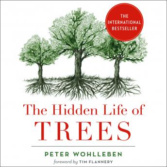 The Hidden Life of Trees: What They Feel, How They Communicate
