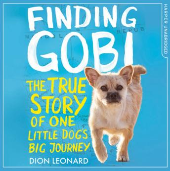 Finding Gobi (Younger Readers edition)