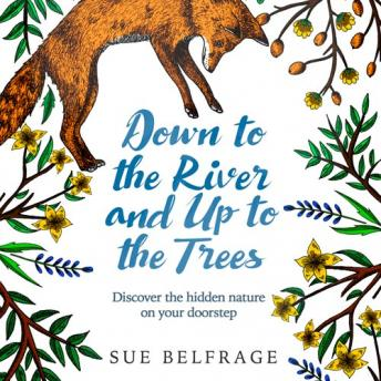 Down to the River and Up to the Trees: Discover the hidden nature on your doorstep, Sue Belfrage