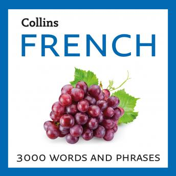 French: 3000 words and phrases