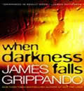 When Darkness Falls, James Grippando