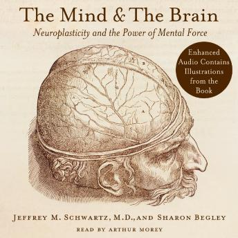 Mind and the Brain: Neuroplasticity and the Power of Mental Force, Sharon Begley, Jeffrey M. Schwartz