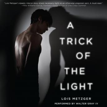 Trick of the Light, Lois Metzger