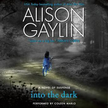 Into the Dark: A Novel of Suspense
