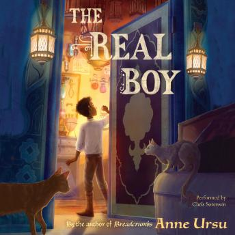Real Boy, Anne Ursu