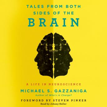 Download Tales from Both Sides of the Brain: A Life in Neuroscience by Michael S. Gazzaniga
