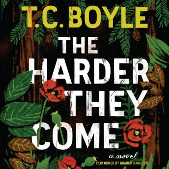 Harder They Come: A Novel, T.C. Boyle