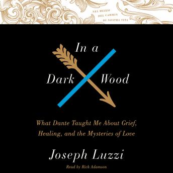 In A Dark Wood: What Dante Taught Me About Grief, Healing, and the Mysteries of Love, Joseph Luzzi