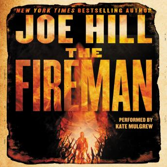 Fireman: A Novel sample.