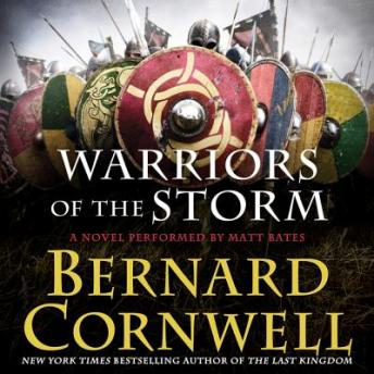 Warriors of the Storm: A Novel