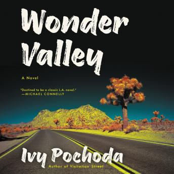 Wonder Valley: A Novel, Ivy Pochoda