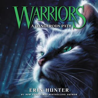 A Warriors #5: A Dangerous Path