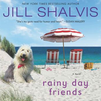 Rainy Day Friends: A Novel