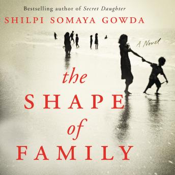 Shape of Family: A Novel, Shilpi Somaya Gowda