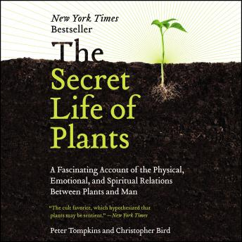 Secret Life of Plants: A Fascinating Account of the Physical, Emotional, and Spiritual Relations Between Plants and Man, Christopher Bird, Peter Tompkins