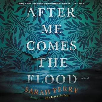 After Me Comes the Flood: A Novel