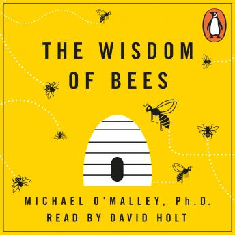 Wisdom of Bees: What the Hive Can Teach Business about Leadership, Efficiency, and Growth, Michael O'Malley