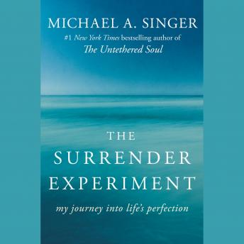 Download Surrender Experiment: My Journey into Life's Perfection by Michael A. Singer