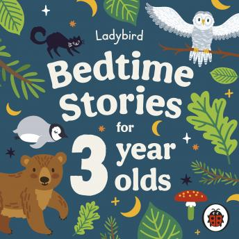 Ladybird Bedtime Stories for 3 Year Olds