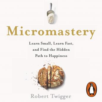 Micromastery: 39 Little Skills to Help You Find Happiness, Robert Twigger