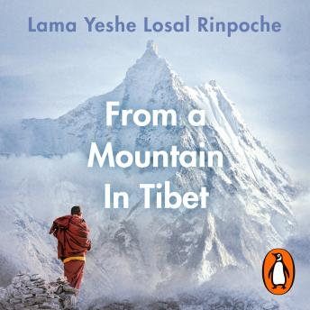 From a Mountain In Tibet: A Monk's Journey