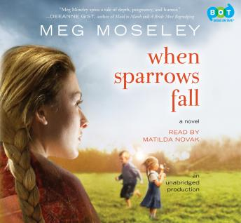 Download When Sparrows Fall: A Novel by Meg Moseley