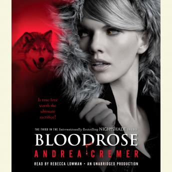 Download Bloodrose: A Nightshade Novel by Andrea Cremer