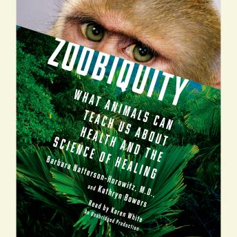 Download Zoobiquity: What Animals Can Teach Us About Health and the Science of Healing by Barbara Natterson-Horowitz, Kathryn Bowers