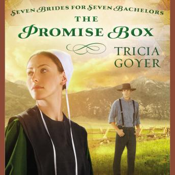 Download Promise Box by Tricia Goyer