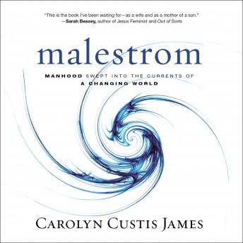 Malestrom: Manhood Swept into the Currents of a Changing World, Diana Batarseh, Carolyn Custis James