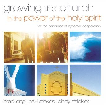 Growing the Church in the Power of the Holy Spirit: Seven Principles of Dynamic Cooperation, Cindy Strickler, Paul K. Stokes, Brad Long